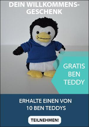 Bentheimer Eisenbahn Ben Teddy